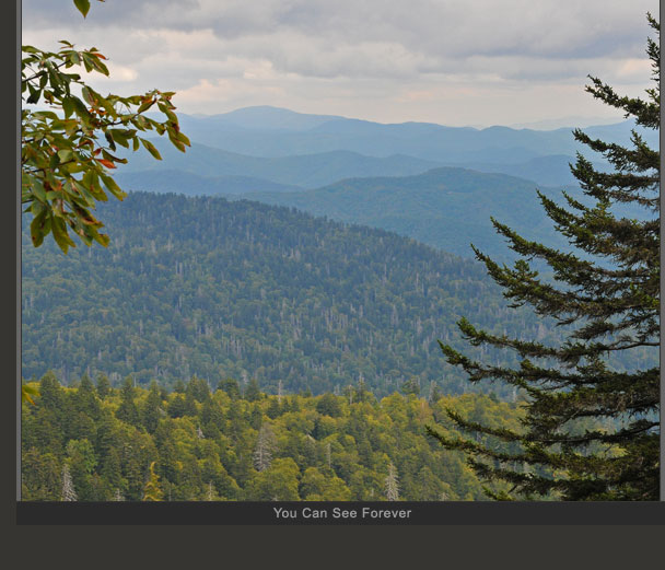 Blue Ridge Parkway Photo